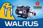Walrus Pumps