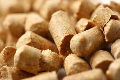 Make Biomass Pellets ~ Making biomass investment affordable renewable energy focus