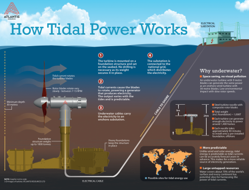 You are here: Home / Features / Tidal developments power forward