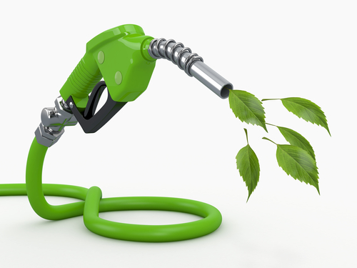 future of bioenergy essay Renewable biomass energy nisha sriram, member, ieee and mohammad shahidehpour,  future efficiency improvements will include co-firing of biomass in existing.