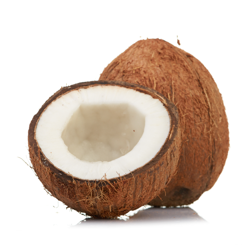 Dp Cleantech To Build Thai Coconut To Energy Power Plant