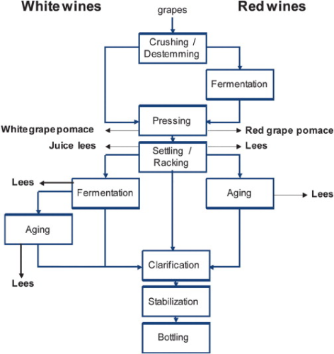Membrane processing: Natural antioxidants from winemaking by ...