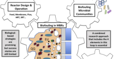 mbr literature review The biobarrier® membrane bioreactor (mbr) helps to meet the increasingly  stringent needs of water quality standards, site issues, and water reuse  applications.